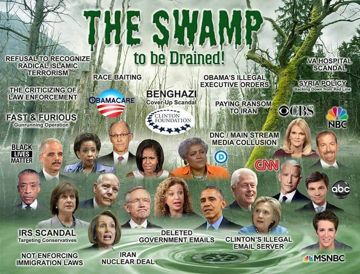 the swamp resized