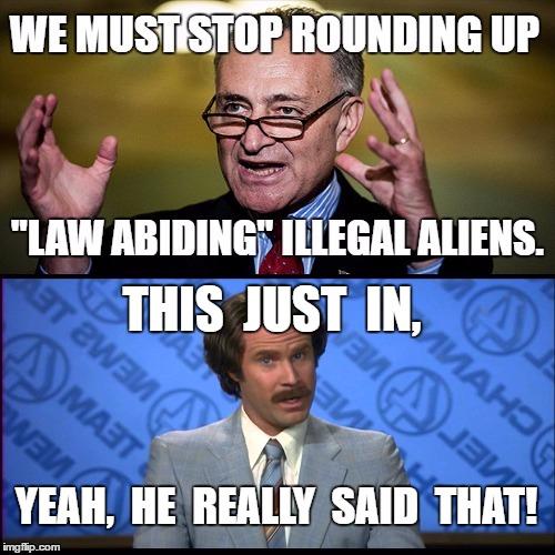 law abiding illegal aliens