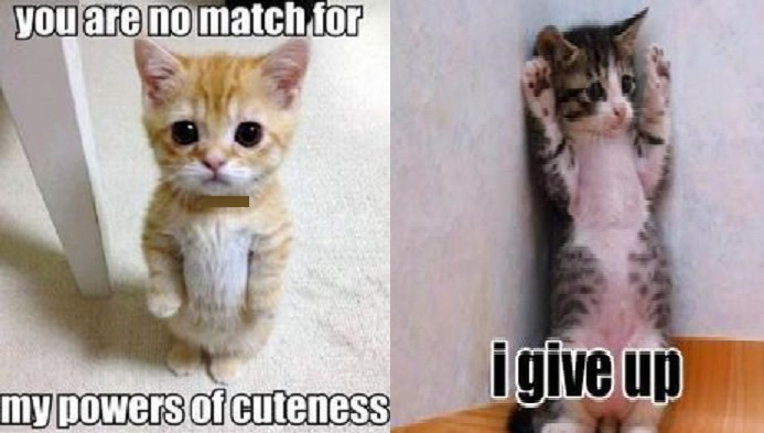 powers of cuteness i give up