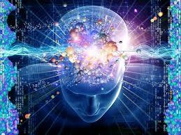 mult inteligence 1