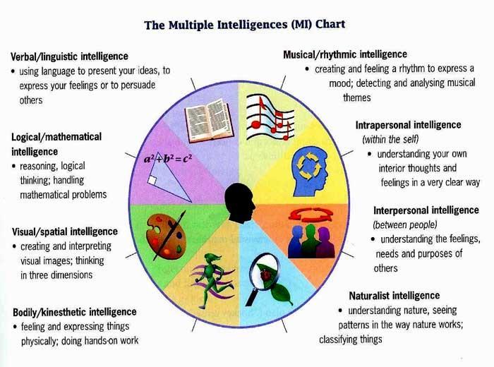 mult intelligence 3