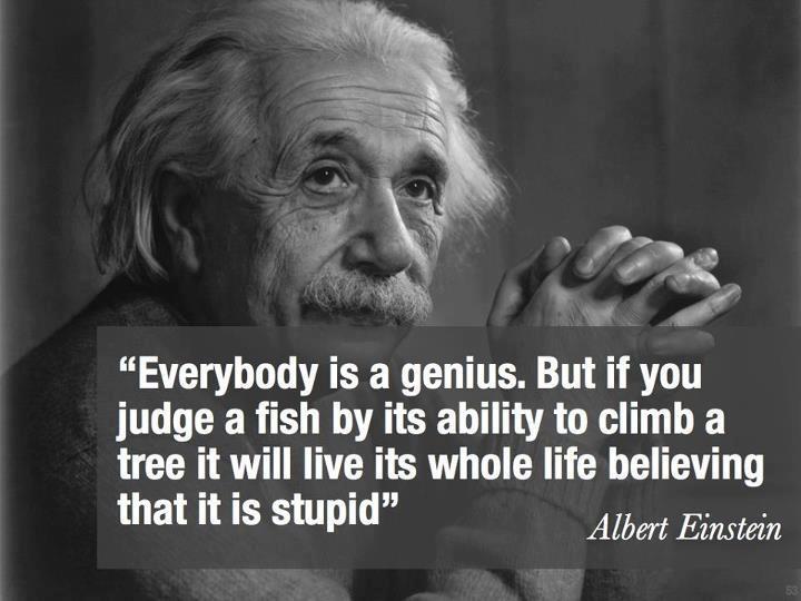 mult intelligence 4