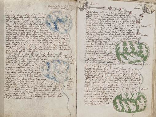 voynich manuscript
