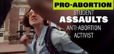 activists 13